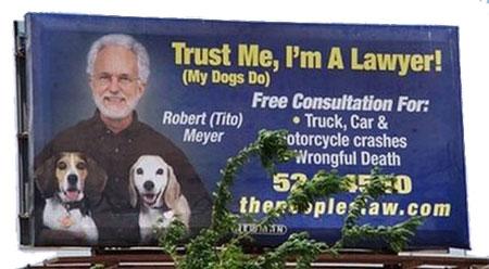 billboard_dogs